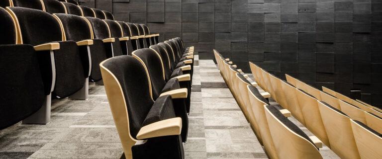Oscar Teater, Biograf og Konferencestol